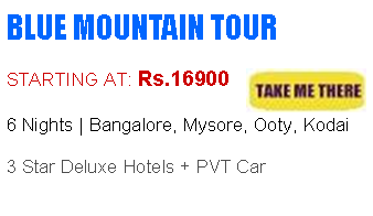 Blue Mountain Tour