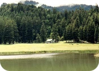 Himachal Holiday Package_Kajjiar know as the mini Switzerland of Himachal India