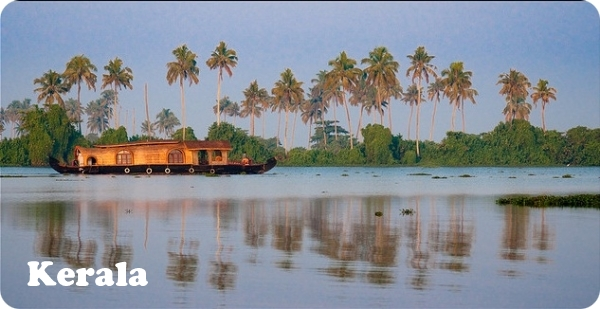 Beautiful morning in a houseboat on backwaters of kerala